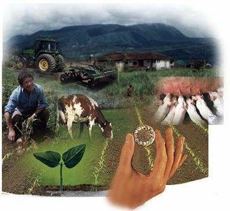 Carrera tecnica SENA en Produccion agropecuaria